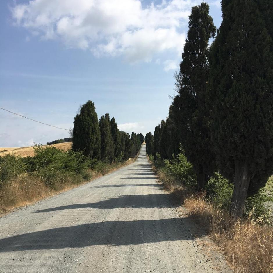 percorso_san_giminiano_volterra_-_2_parte_10_20170726_2001437508